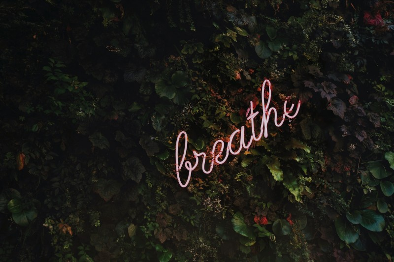Breathe Neon Sign in Trees